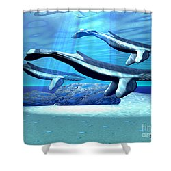 Blue Whale Sanctuary Shower Curtain by Corey Ford