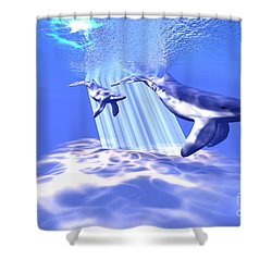 Blue Whales Shower Curtain by Corey Ford