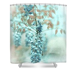 Blue Wisteria Shower Curtain by Angela A Stanton