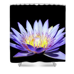 Shower Curtain featuring the photograph Blue Wonder by Judy Vincent