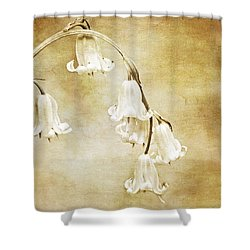 Bluebell Arch Shower Curtain by Meirion Matthias