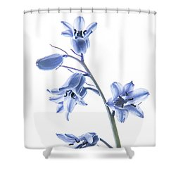 Bluebell Stem Shower Curtain