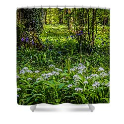 Bluebells And Wild Garlic At Coole Park Shower Curtain