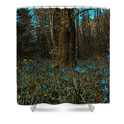 Bluebells In Lismore Forest 2 Shower Curtain