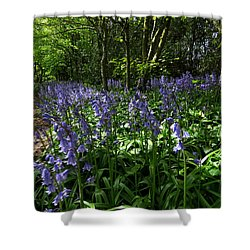 Bluebells4 Shower Curtain