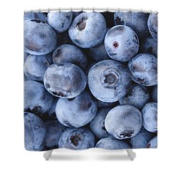 Blueberries Foodie Phone Case Shower Curtain by Edward Fielding