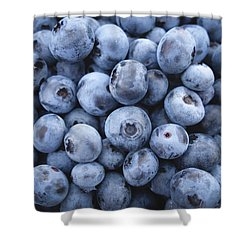 Blueberries Shower Curtain by Happy Home Artistry