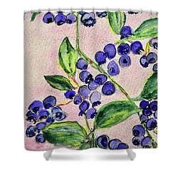 Blueberries Shower Curtain by Kim Nelson