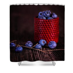 Blueberry Delight Shower Curtain by Tom Mc Nemar