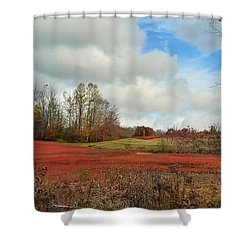 Blueberry Fields Shower Curtain