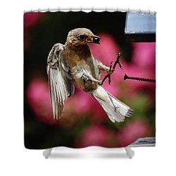 Shower Curtain featuring the photograph Bluebird 0726162 by Douglas Stucky