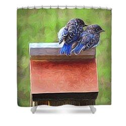 Bluebird Fledglings Shower Curtain