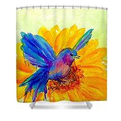 Bluebird On Sunflower  Shower Curtain