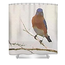 Shower Curtain featuring the digital art Bluebird Stare  by Shelli Fitzpatrick