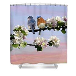Bluebirds In Apple Tree Shower Curtain
