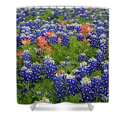 Bluebonnet Indian Painbrush Shower Curtain