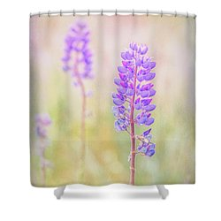 Bluebonnet Shower Curtain by Russell Styles