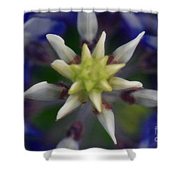 Bluebonnet Top Shower Curtain