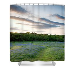 Bluebonnet Trail Ennis Texas 2015 V5 Shower Curtain