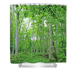 Blueboonet Swamp Baton Rouge La Shower Curtain