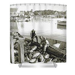 Bluefin Tuna At Barnstable Harbor Shower Curtain