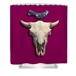 Bluejay And The Buffalo Skull Shower Curtain