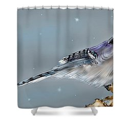 Shower Curtain featuring the digital art Winter Bluejay by Darren Cannell