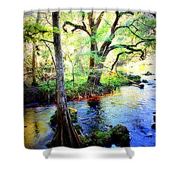 Blues In Florida Swamp Shower Curtain by Carol Groenen