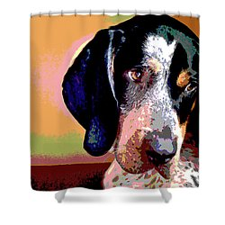 Bluetick Coonhound Shower Curtain by Charles Shoup