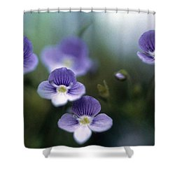 Bluettes Shower Curtain by Laurie Paci