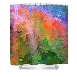Blurry Painting Shower Curtain by Wendy McKennon