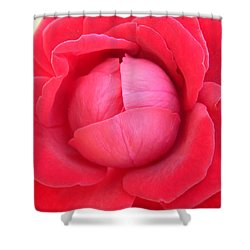 Blush Lettuce Rose Shower Curtain