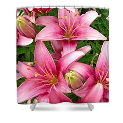 Blush Of The Blossoms Shower Curtain by Randy Rosenberger