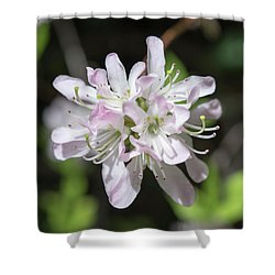Blushing Azaleas Shower Curtain