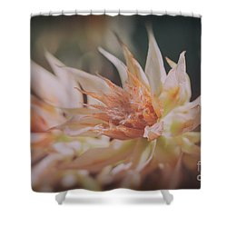 Shower Curtain featuring the photograph Blushing Bride by Linda Lees
