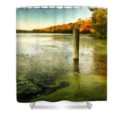 Blydenberg Park In The Fall Shower Curtain