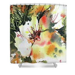 Bo Peep Shower Curtain by Rae Andrews