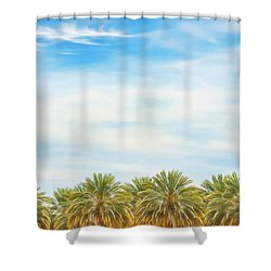 Boarding Palms Shower Curtain
