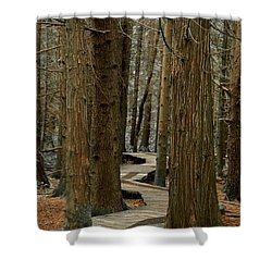 Boardwalk Among Trees Shower Curtain