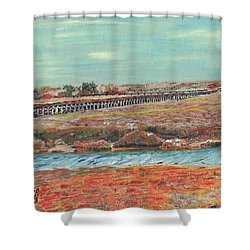 Boardwalk At Sandwich Ma Shower Curtain