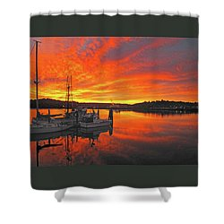 Boardwalk Brilliance With Fish Ring Shower Curtain by Suzy Piatt
