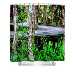 Boardwalk In The Woods Shower Curtain