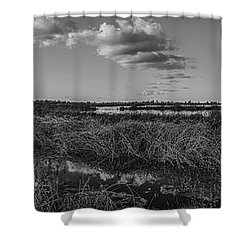 Boardwalk Panorama Monochrome Shower Curtain