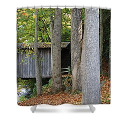 Bob White Shower Curtain by Eric Liller
