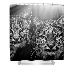 Shower Curtain featuring the mixed media Bobcats by Elaine Malott