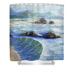 Bodiga Bay #2 Shower Curtain by Randy Sprout