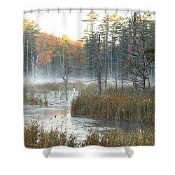 Bog Fog Shower Curtain