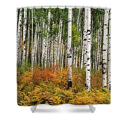 Shower Curtain featuring the photograph Bold And Magnificent Autumn by Tim Reaves
