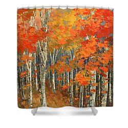 Shower Curtain featuring the painting Bold Banners by Tatiana Iliina
