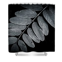 Bold Branch Shower Curtain